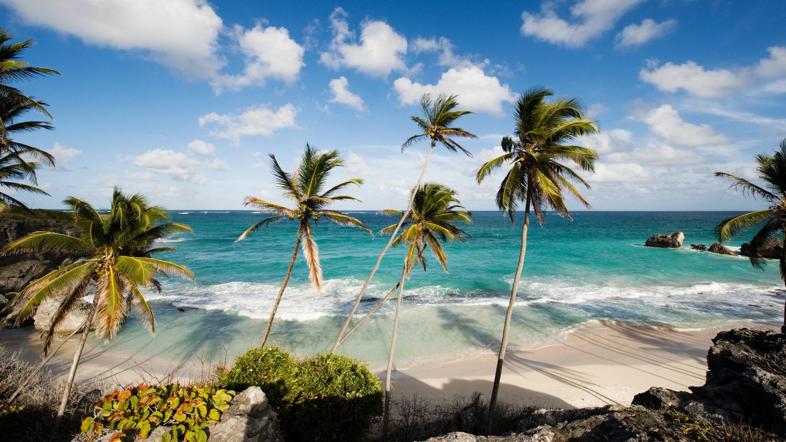 Quer morar em Barbados? Governo oferece visto de 12 meses para trabalho  remoto na ilha do Caribe - Estilozzo